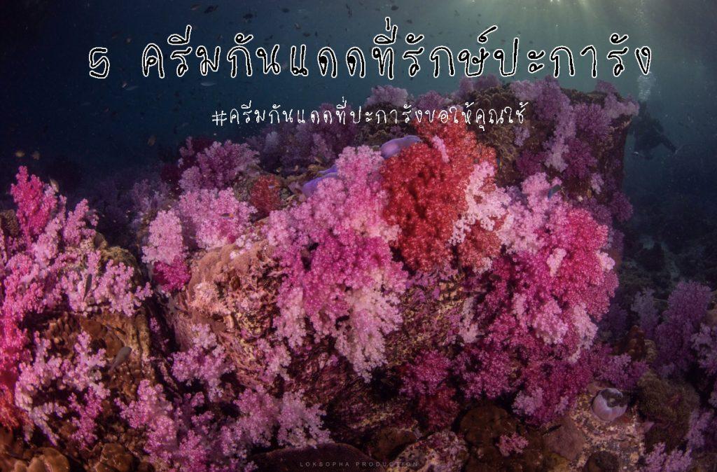 ครีมกันแดดรักษ์ปะการัง