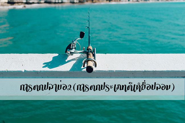 การตกปลาบ่อ2(การตกประเภทตีเหยื่อปลอม)
