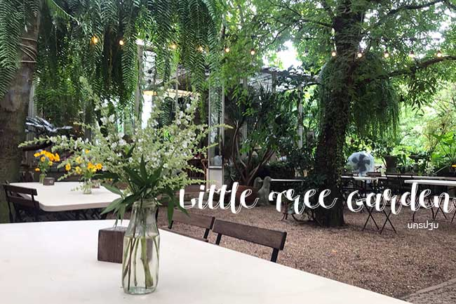 สูดความสดชื่นให้เต็มปอด ที่ Little Tree Garden นครปฐม