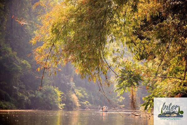 เที่ยวแก่งบางระจัน ตามล่าหาแมงกะพรุนน้ำจืด แห่งเดียวในประเทศไทย !! เที่ยวไทย ท่องเที่ยวไทย เที่ยวเมืองรอง รีวิวสถานที่ท่องเที่ยว