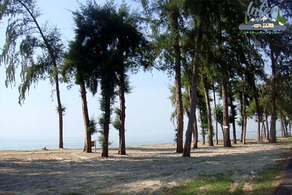 หลังจาดหมดการแพร่ระบาดของโรคนี้ ทะเล จะเป็น ที่เที่ยวยอดนิยม ที่คนจะแห่กันไปอย่างแน่นอน บทความนี้จะมาแนะนำ หาดสวนสน ทะเลระยอง บรรยากาศสงบ แถมวิวสวย เที่ยวไทย ท่องเที่ยวไทย