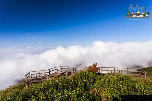 เส้นทางเดินศึกษาธรรมชาติ กิ่วแม่ปาน ดอยอินทนนท์ จุดชมวิวสรวงสวรรค์แห่งเชียงใหม่ ที่เที่ยว ที่เที่ยวเชียงใหม่ กิ่วแม่ปาน ดอยอินทนนท์