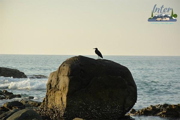 เที่ยวชายหาดธรรมชาติในอุทยานแห่งชาติเขาหลัก-ลำรู่ด้วยงบหลักสิบ ที่เที่ยว แนะนำที่เที่ยวพังงา เขาหลัก-ลำรู่