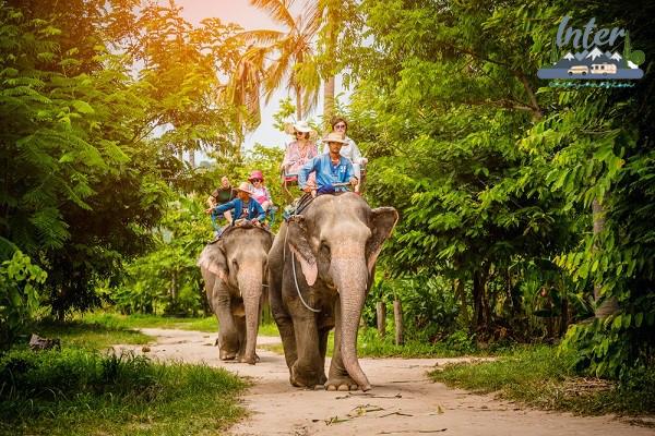 ท่องเที่ยวพัทยาแวะหมู่บ้านช้าง ชมการแสดงและขี่หลังช้าง ที่เที่ยว ที่เที่ยวไทย ที่เที่ยวชลบุรี เที่ยวพัทยา