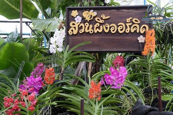 ที่เที่ยวสวนผึ้งสุดว้าว ไม่ไปไม่ได้แล้ว ที่เที่ยว ที่เที่ยวไทย ที่เที่ยวราชบุรี เที่ยวสวนผึ้ง