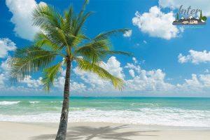 กินลม ชมทะเล เที่ยวที่เกาะสมุย ที่เที่ยว ที่เที่ยวไทย ที่เที่ยวสุราษฎร์ธานี ที่เที่ยวเกาะสมุย
