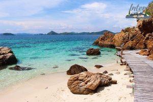แหล่งดำน้ำชมปะการังใกล้กรุงที่ไม่ควรพลาด ที่เที่ยว ที่เที่ยวไทย ที่เที่ยวทะเล ที่เที่ยวดำน้ำ