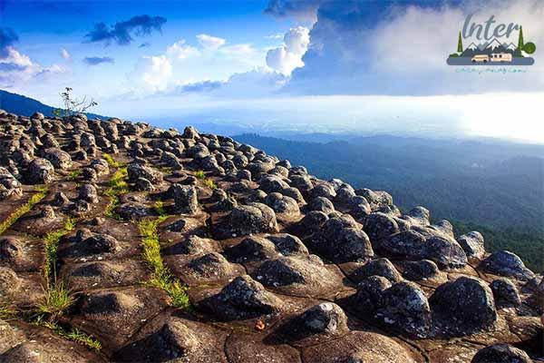 ท่องเที่ยว อุทยานแห่งชาติภูหินร่องกล้า ที่เที่ยว ที่เที่ยวไทย เที่ยวอุทยานแห่งชาติภูหินร่องกล้า