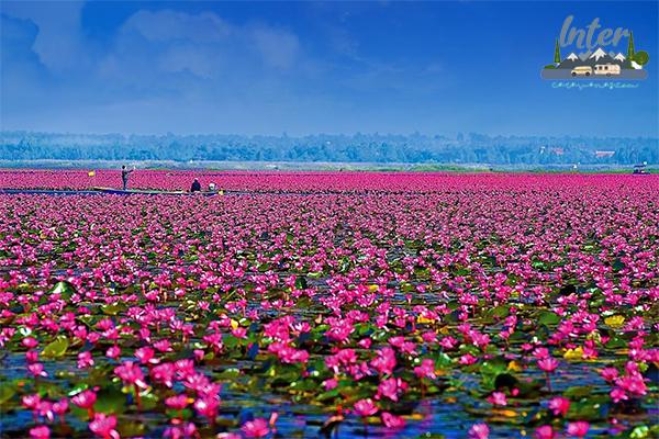 สถานที่ท่องเที่ยวชื่อดังจังหวัดอุดรธานี ที่เที่ยว ที่เที่ยวไทย ที่เที่ยวจังหวัดอุดรธานี